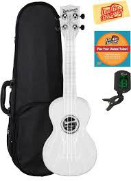 Waterman Ukulele kit with case, instrument, tuner, and DVD