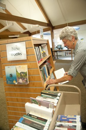 Library volunteer putting books onto shelves.